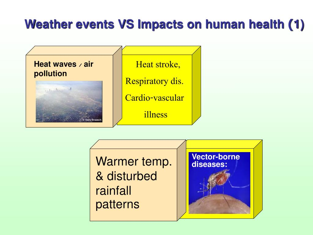 Vector-borne diseases: