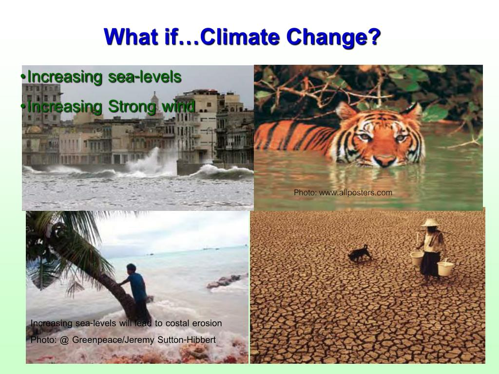 What if…Climate Change?