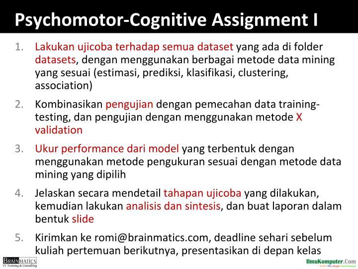 Psychomotor-Cognitive