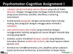 psychomotor cognitive assignment i