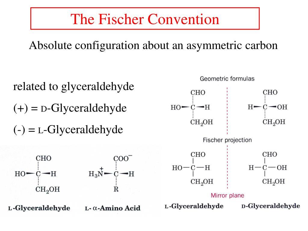 The Fischer Convention