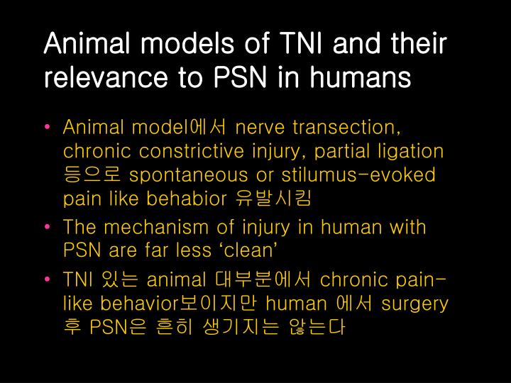 Animal models of tni and their relevance to psn in humans