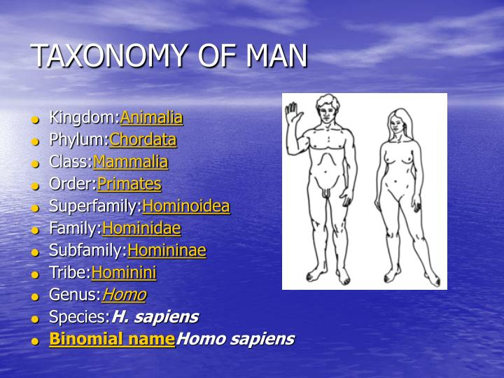 TAXONOMY OF MAN