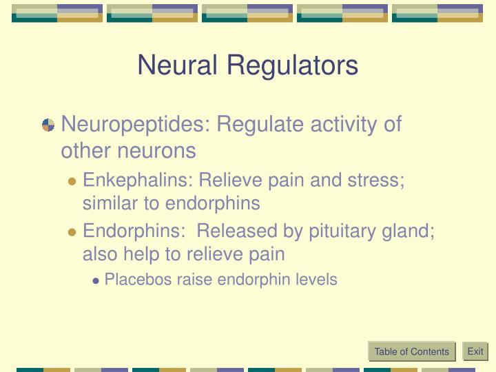 Neural Regulators