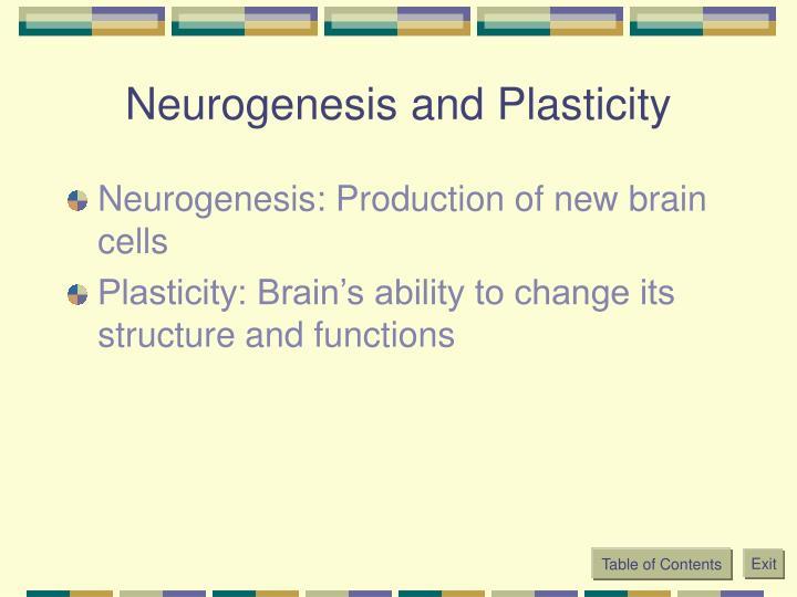 Neurogenesis and Plasticity