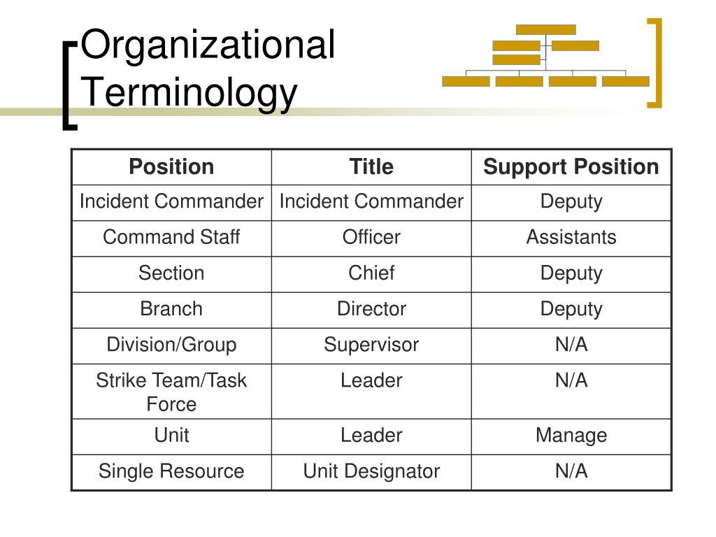 Organizational Terminology