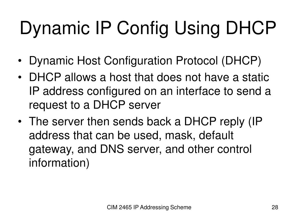 Dynamic IP Config Using DHCP