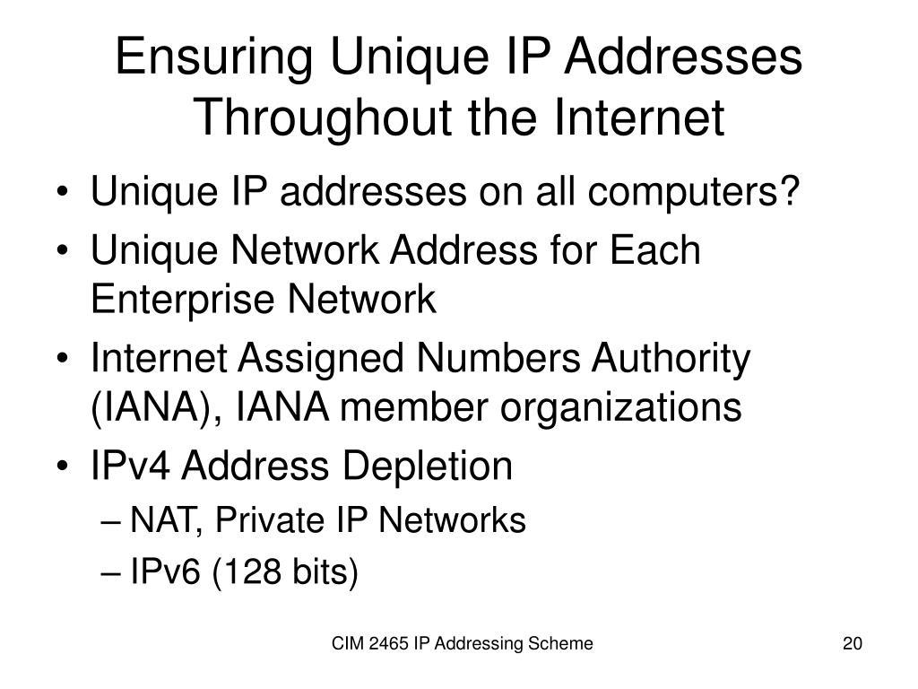 Ensuring Unique IP Addresses Throughout the Internet