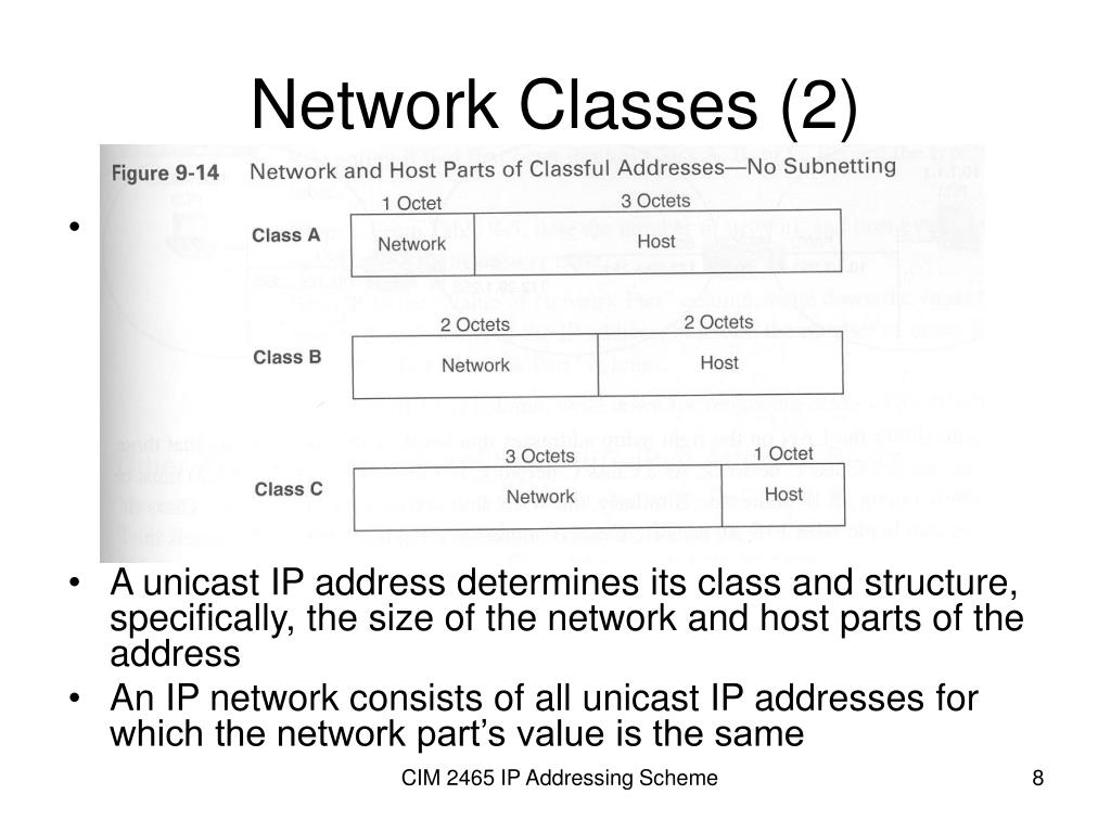 Network Classes (2)