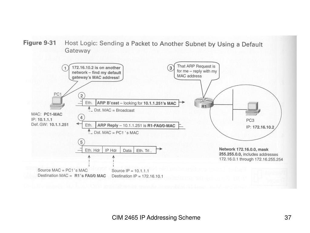 CIM 2465 IP Addressing Scheme