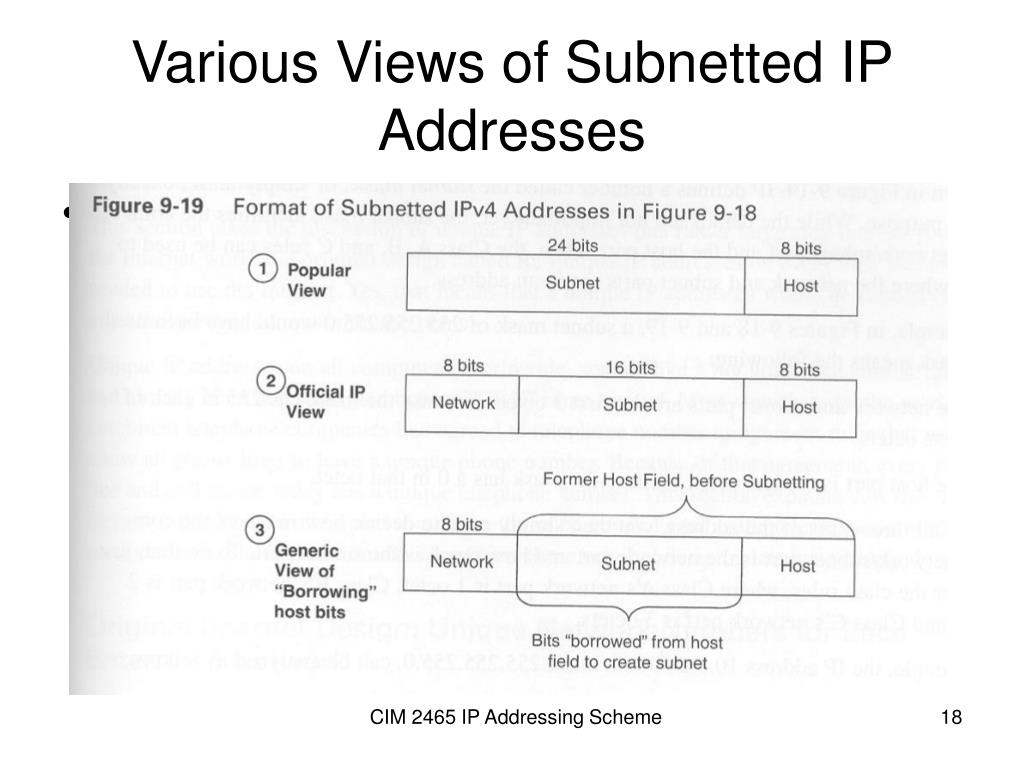 Various Views of Subnetted IP Addresses