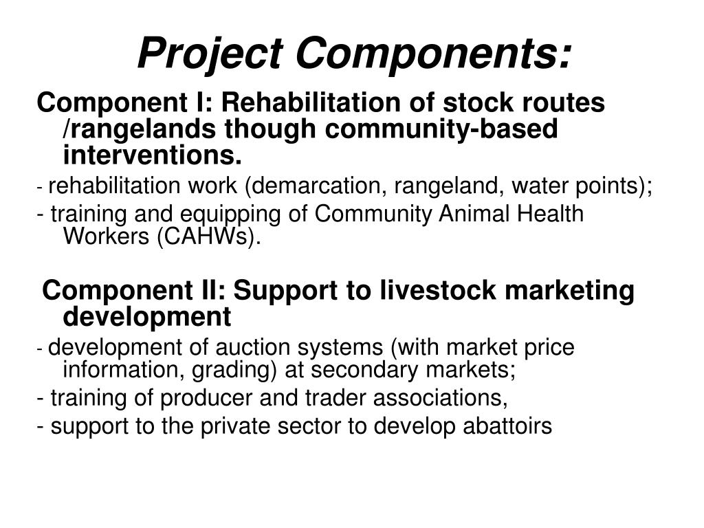 Project Components: