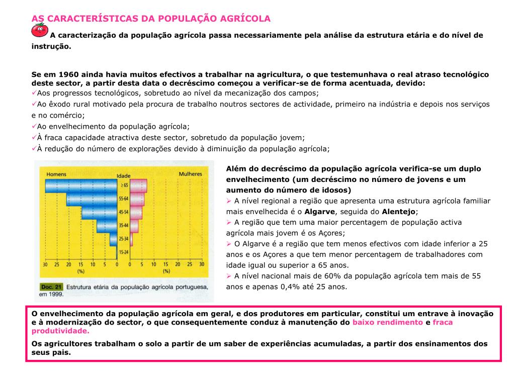 AS CARACTERÍSTICAS DA POPULAÇÃO AGRÍCOLA
