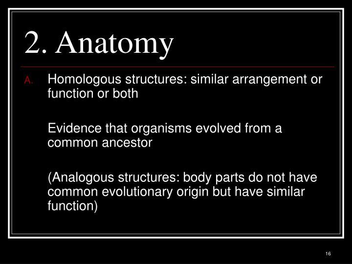 2. Anatomy