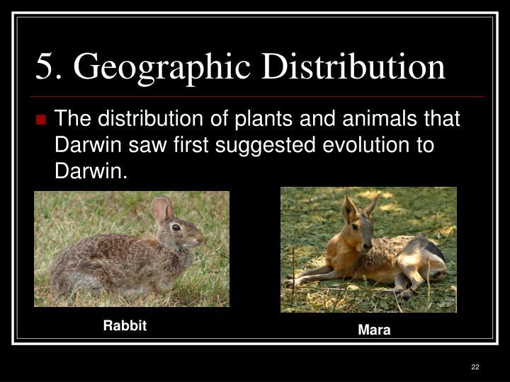 5. Geographic Distribution