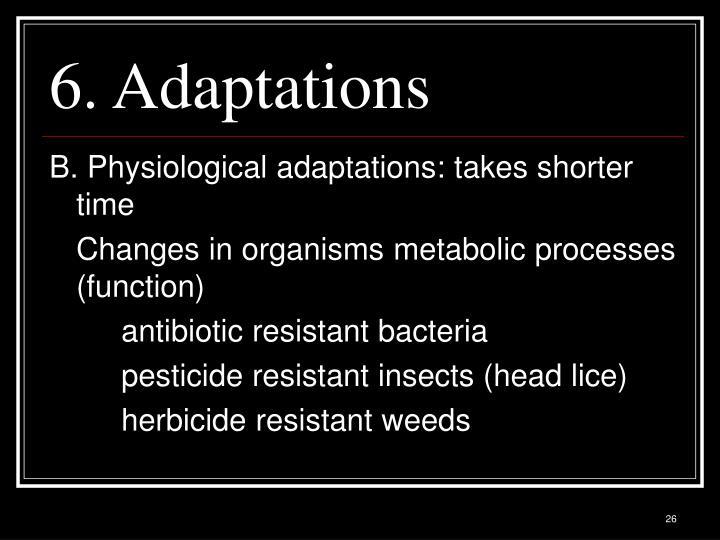 6. Adaptations