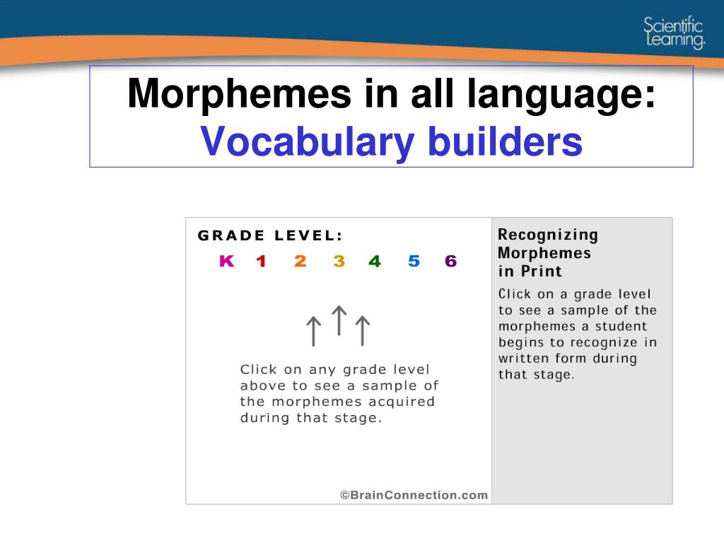Morphemes in all language: