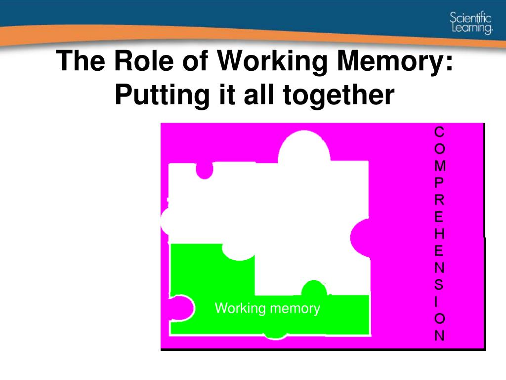 The Role of Working Memory: