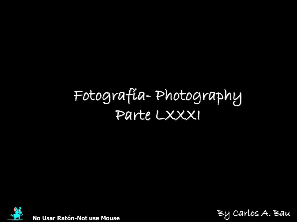 Fotografía- Photography
