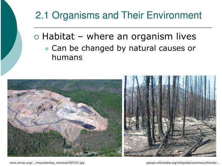 2.1 Organisms and Their Environment