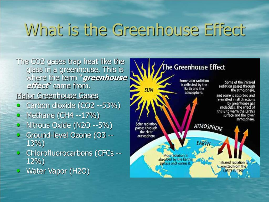 """The CO2 gases trap heat like the glass in a greenhouse. This is where the term """""""