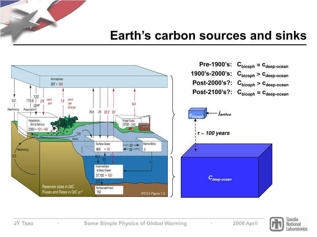 Earth's carbon sources and sinks
