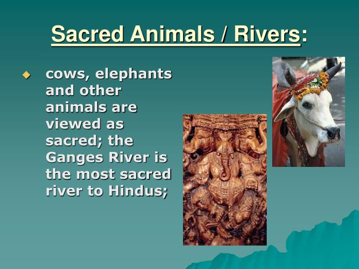 Sacred Animals / Rivers
