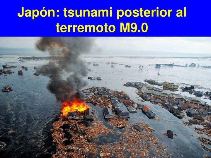Japón: tsunami posterior al terremoto M9.0