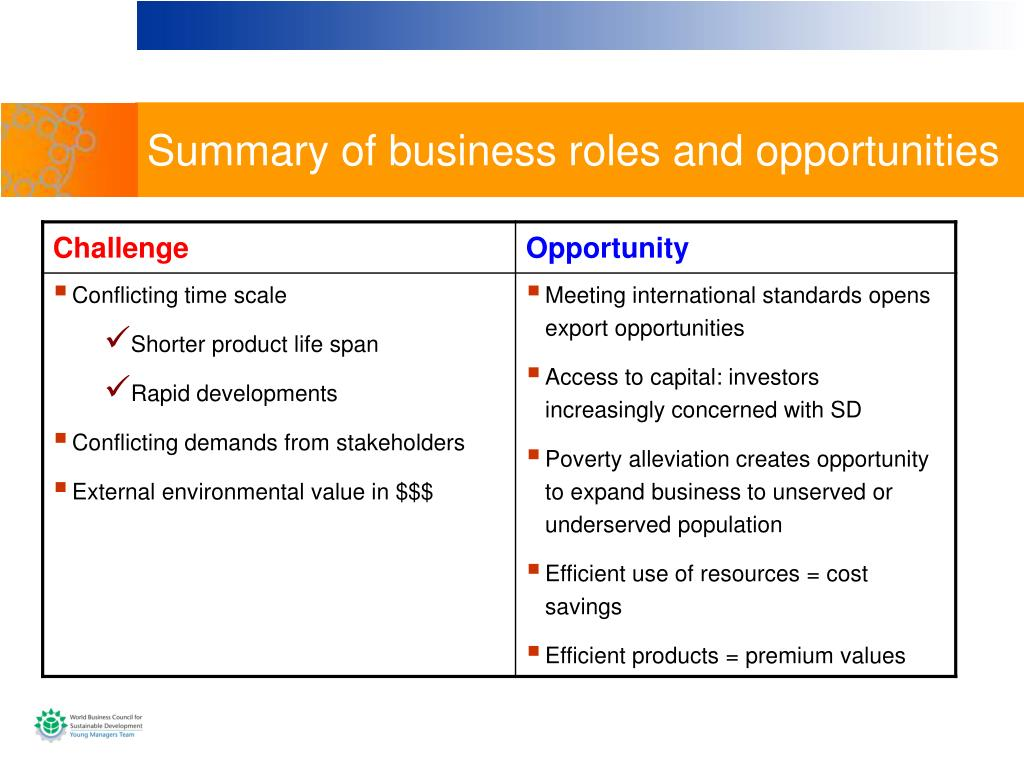 Summary of business roles and opportunities