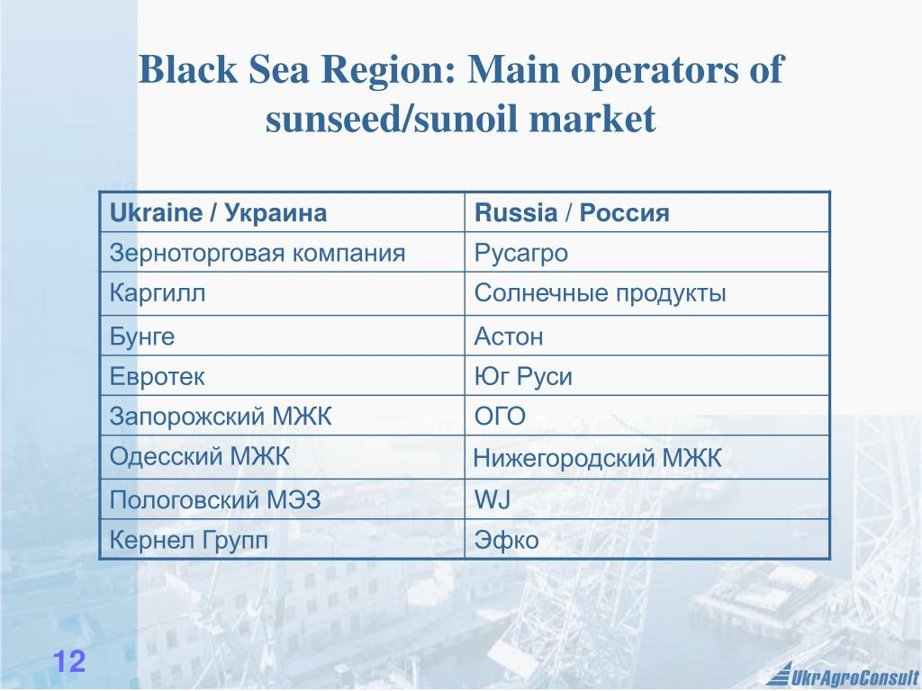 Black Sea Region: Main operators of sunseed/sunoil market