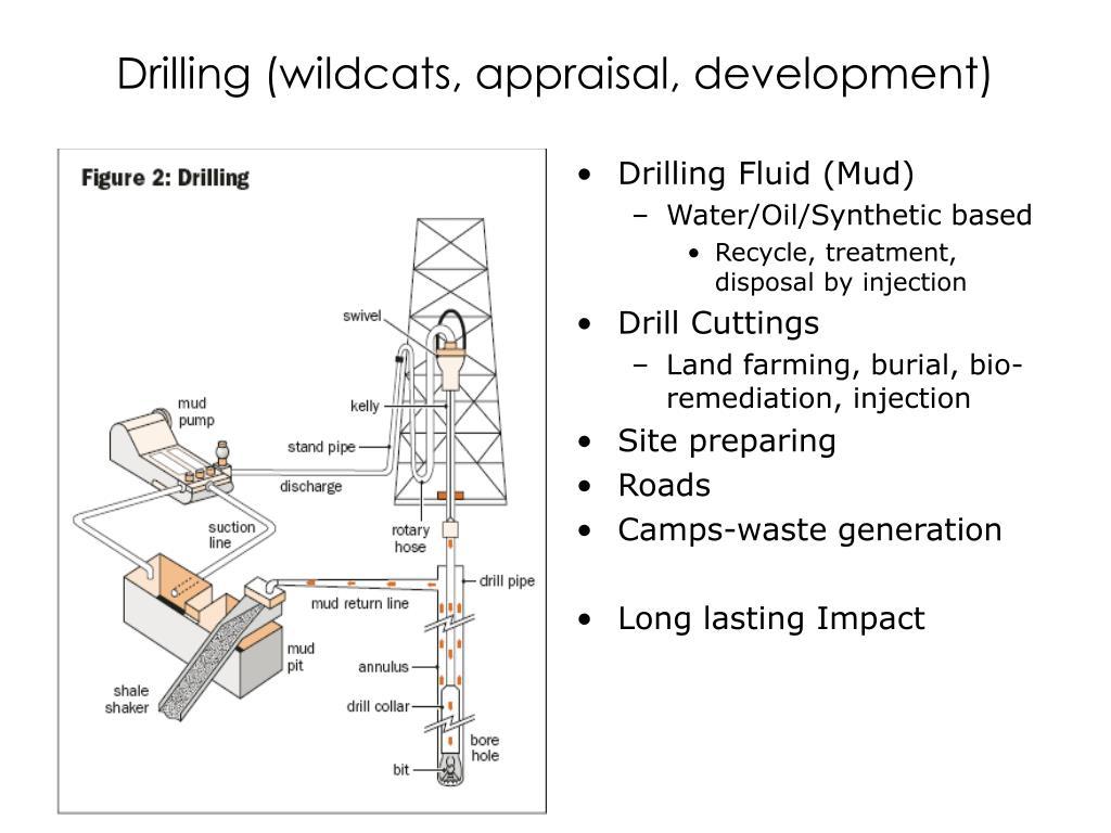 Drilling (wildcats, appraisal, development)
