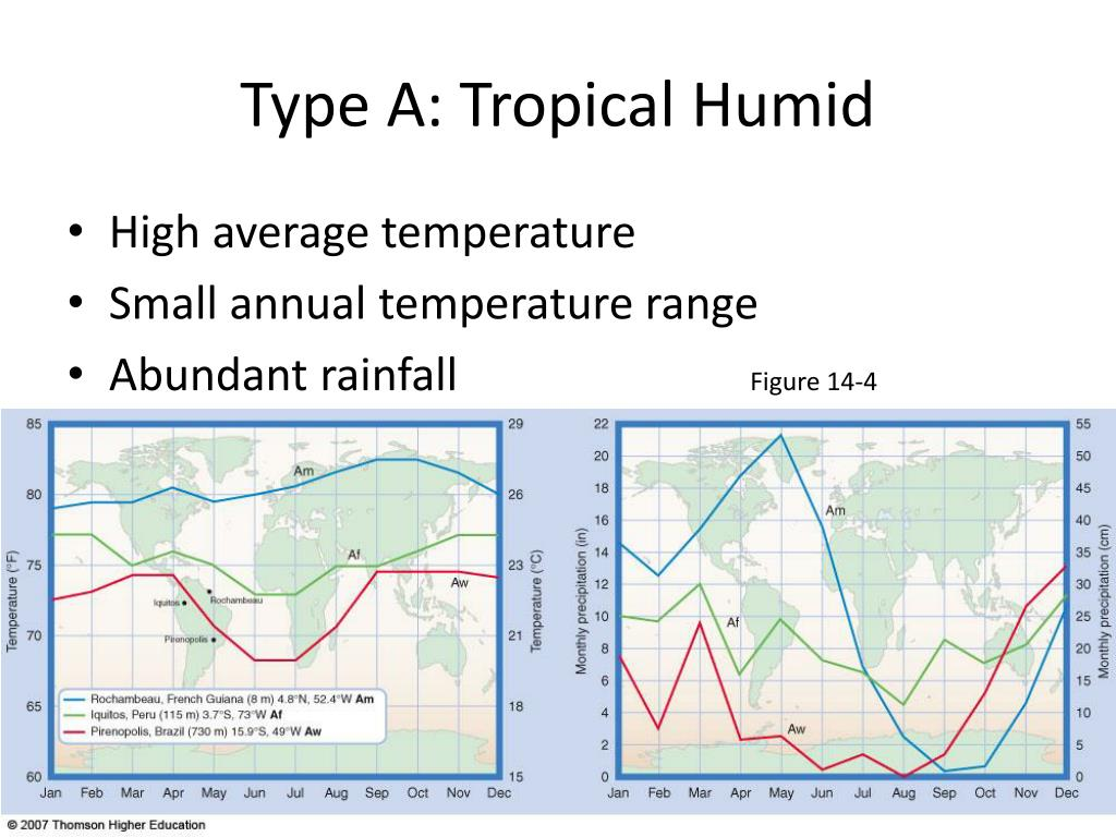 Type A: Tropical Humid