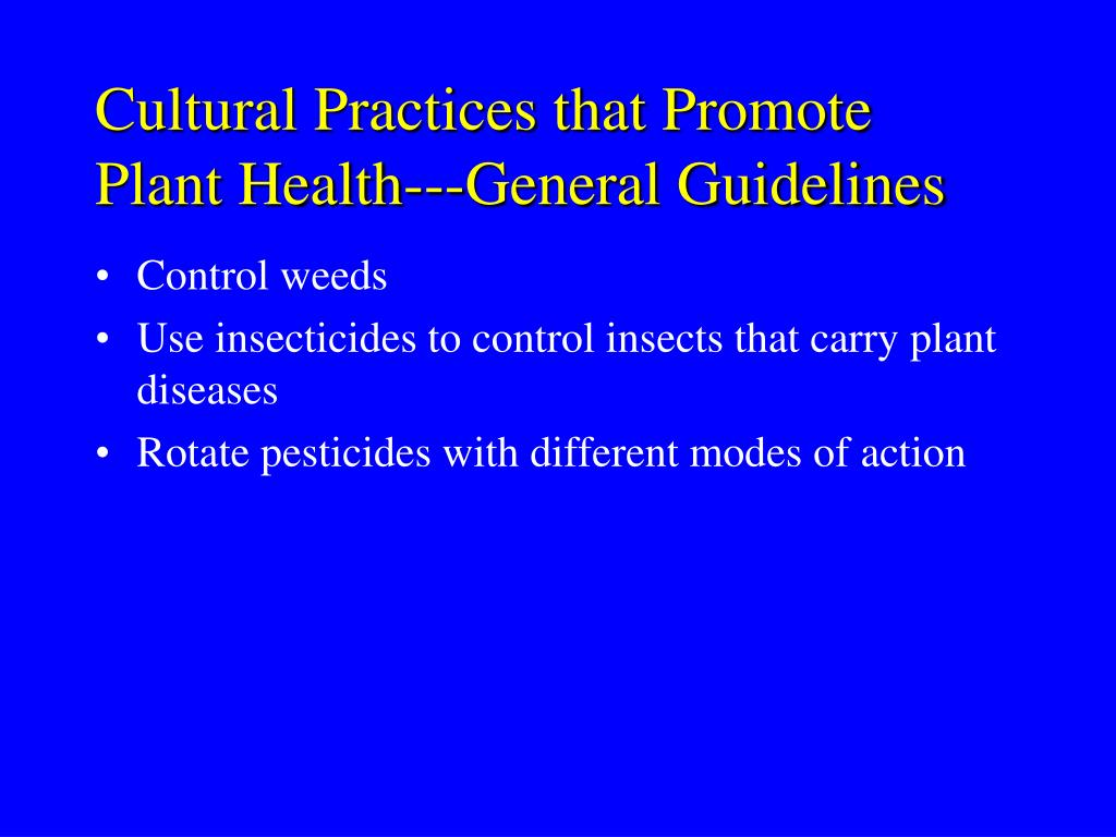 Cultural Practices that Promote