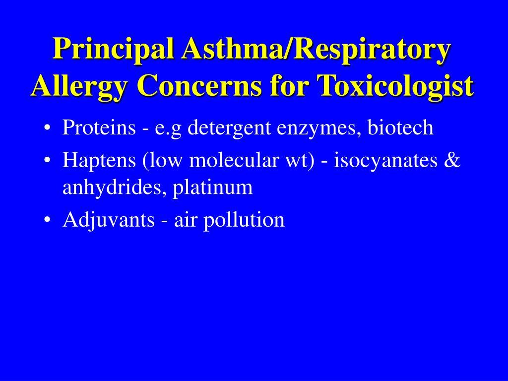 Principal Asthma/Respiratory Allergy Concerns for Toxicologist
