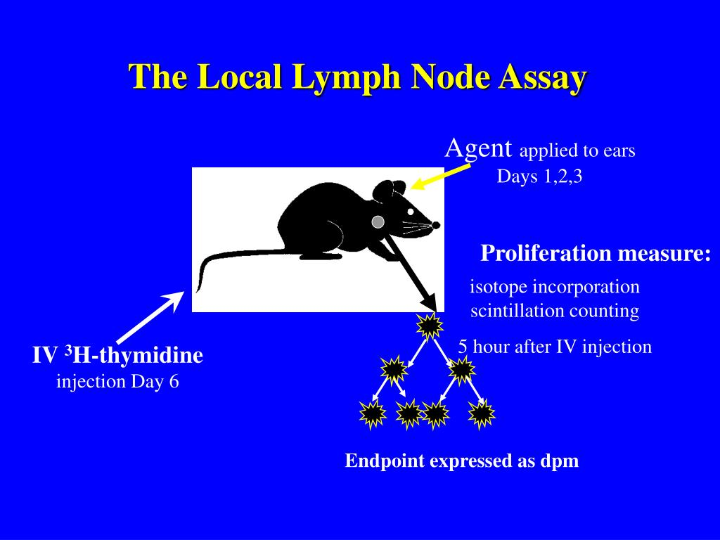 The Local Lymph Node Assay