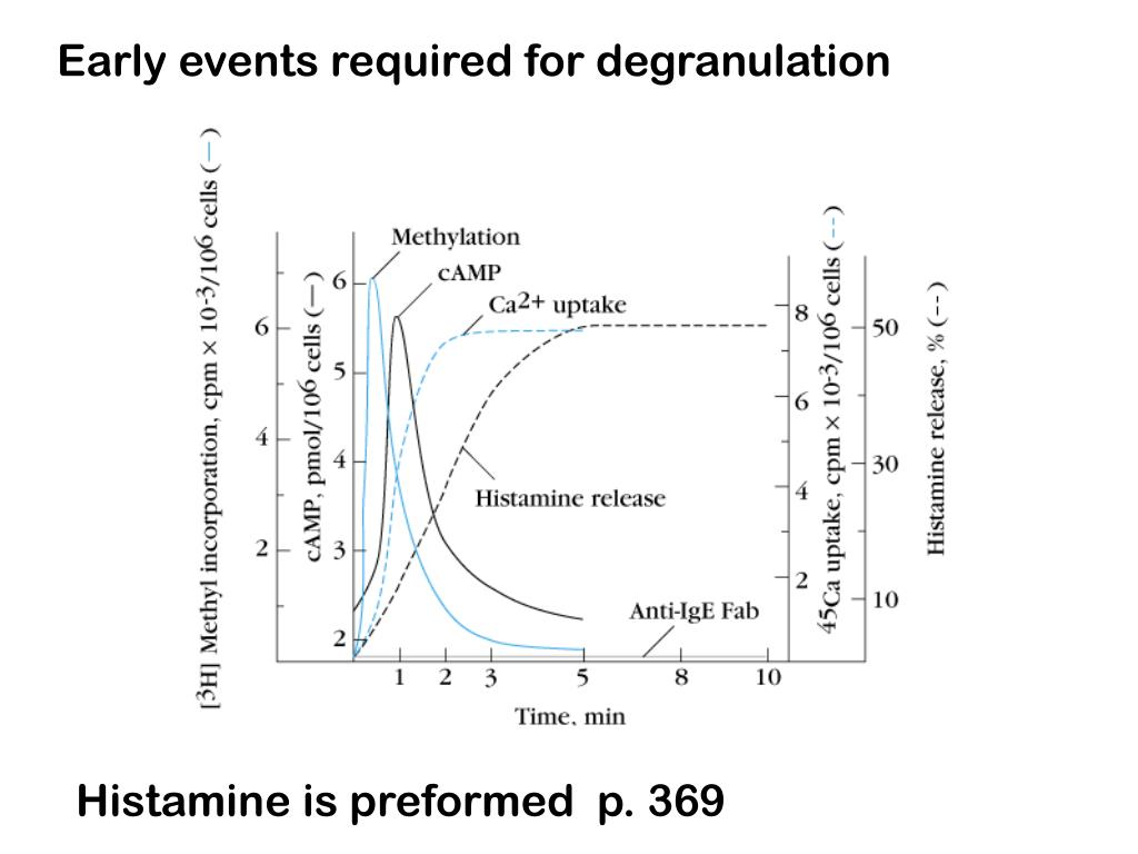 Early events required for degranulation