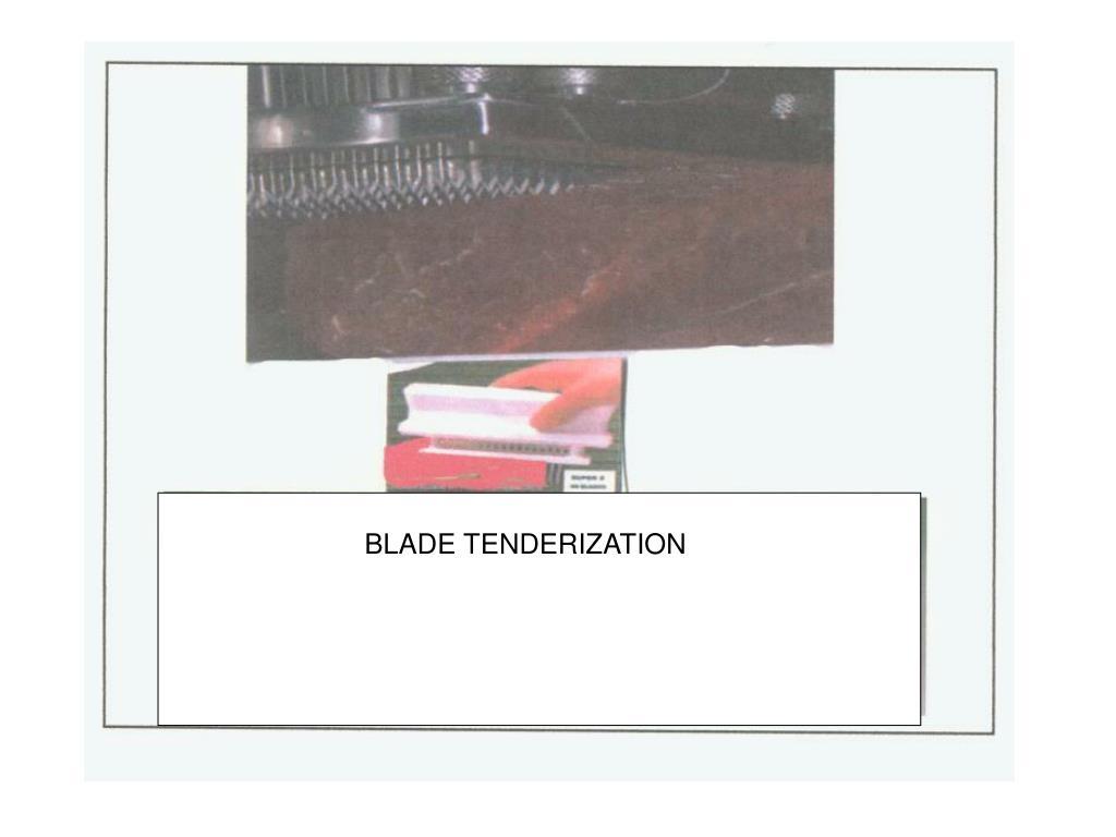 BLADE TENDERIZATION
