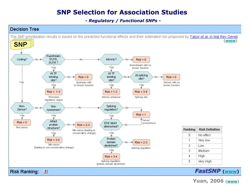 SNP Selection for Association Studies
