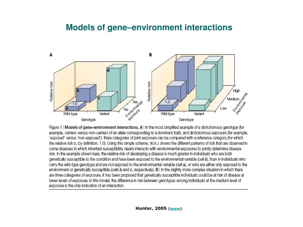 Models of gene–environment interactions