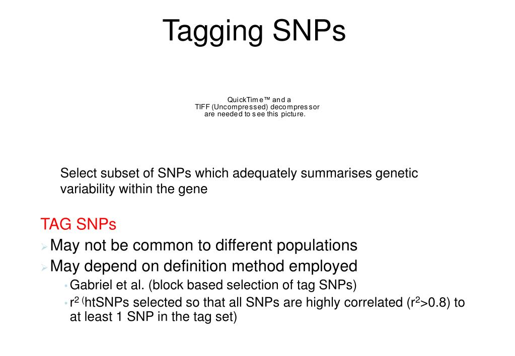 Tagging SNPs