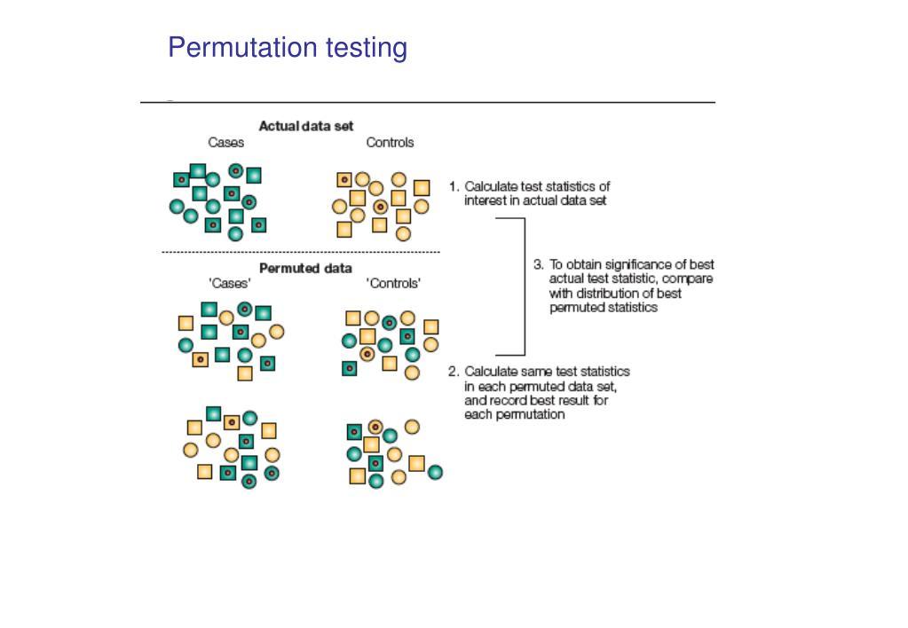 Permutation testing