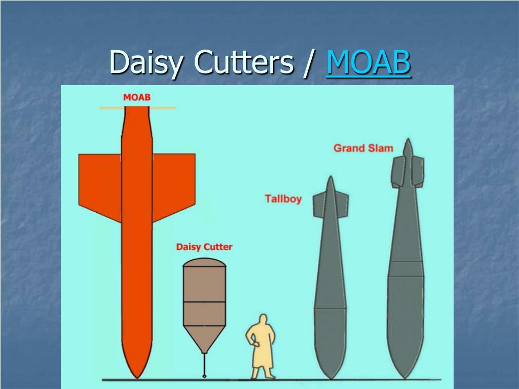 Daisy Cutters /