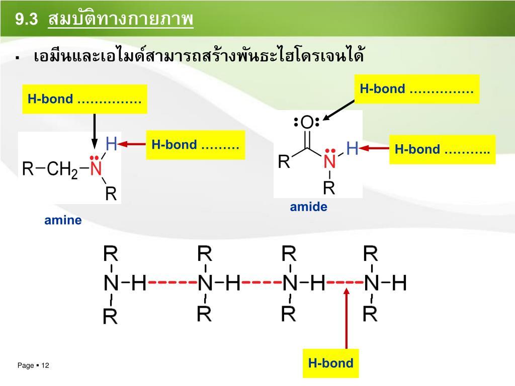 H-bond ……………
