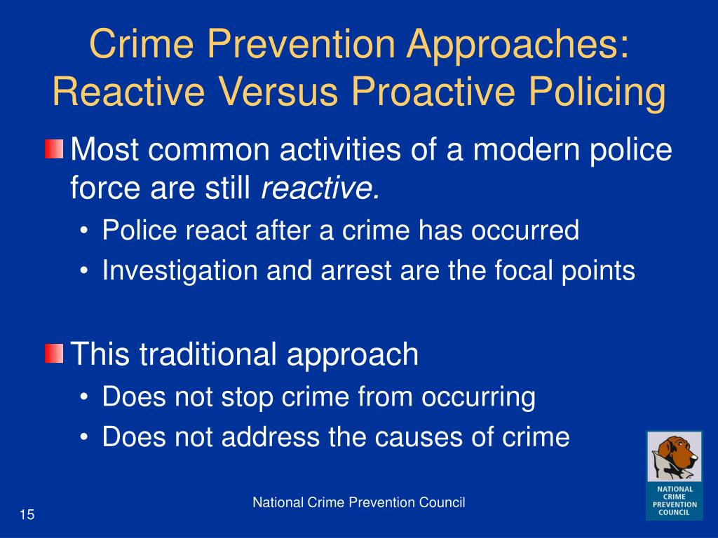 Crime Prevention Approaches: