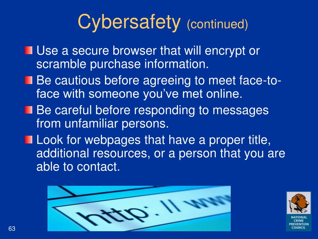 Cybersafety
