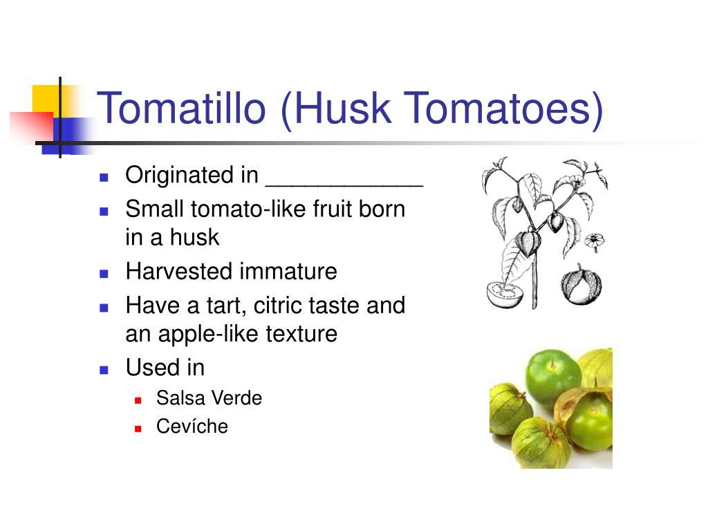 Tomatillo (Husk Tomatoes)