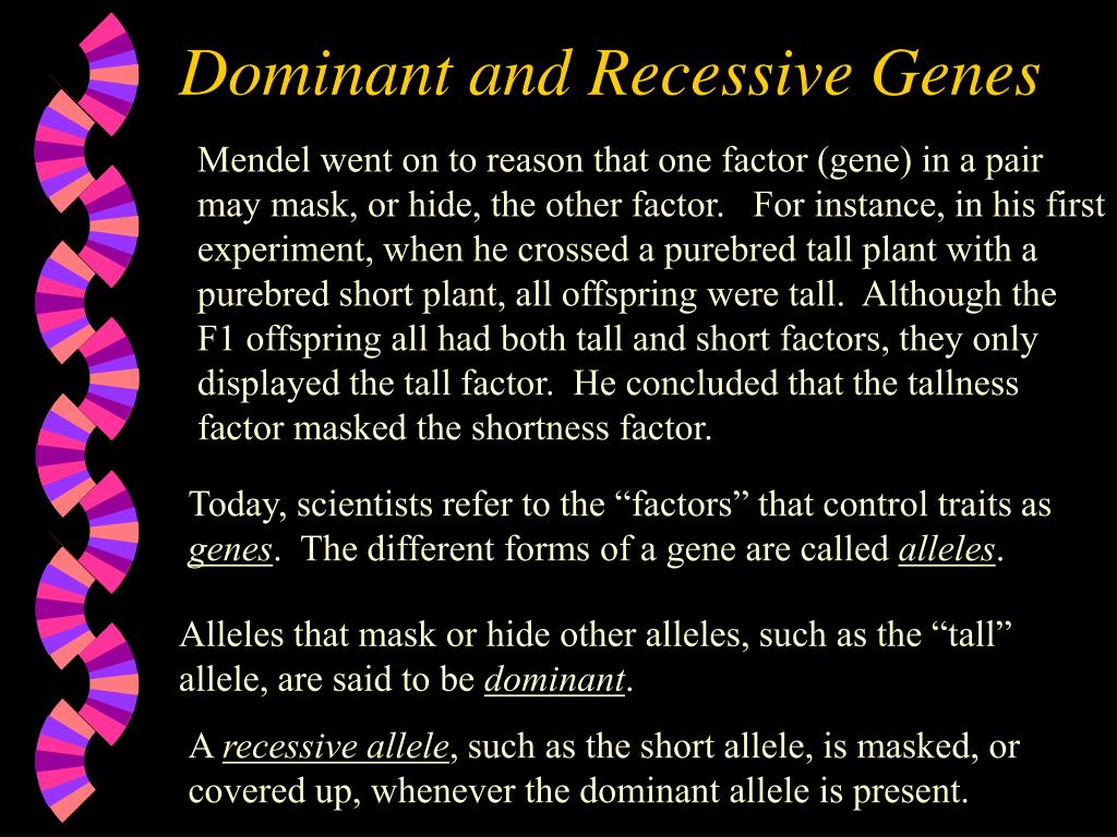 Dominant and Recessive Genes