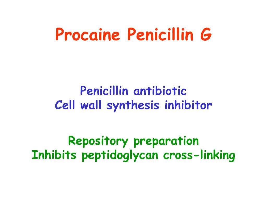 Procaine Penicillin G
