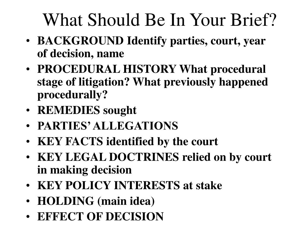 What Should Be In Your Brief?
