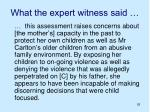 what the expert witness said